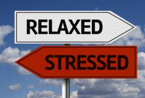 relaxed or stressed